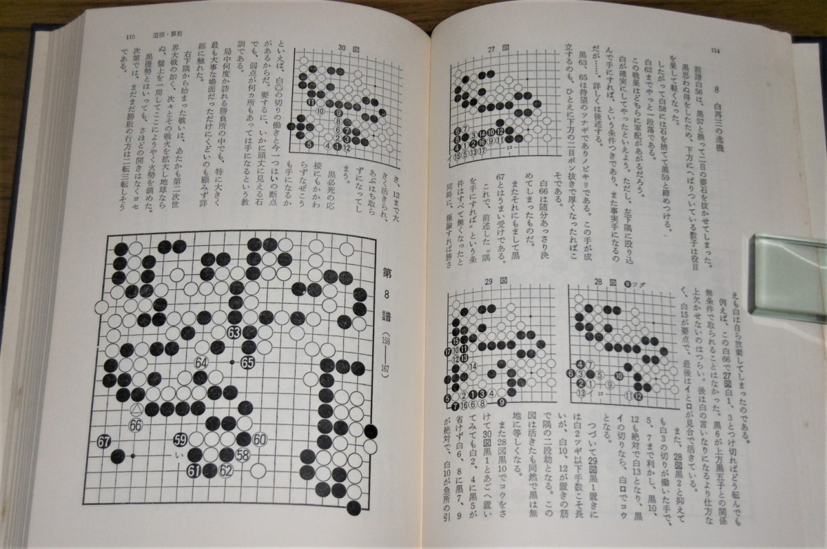 P1020633 (2)