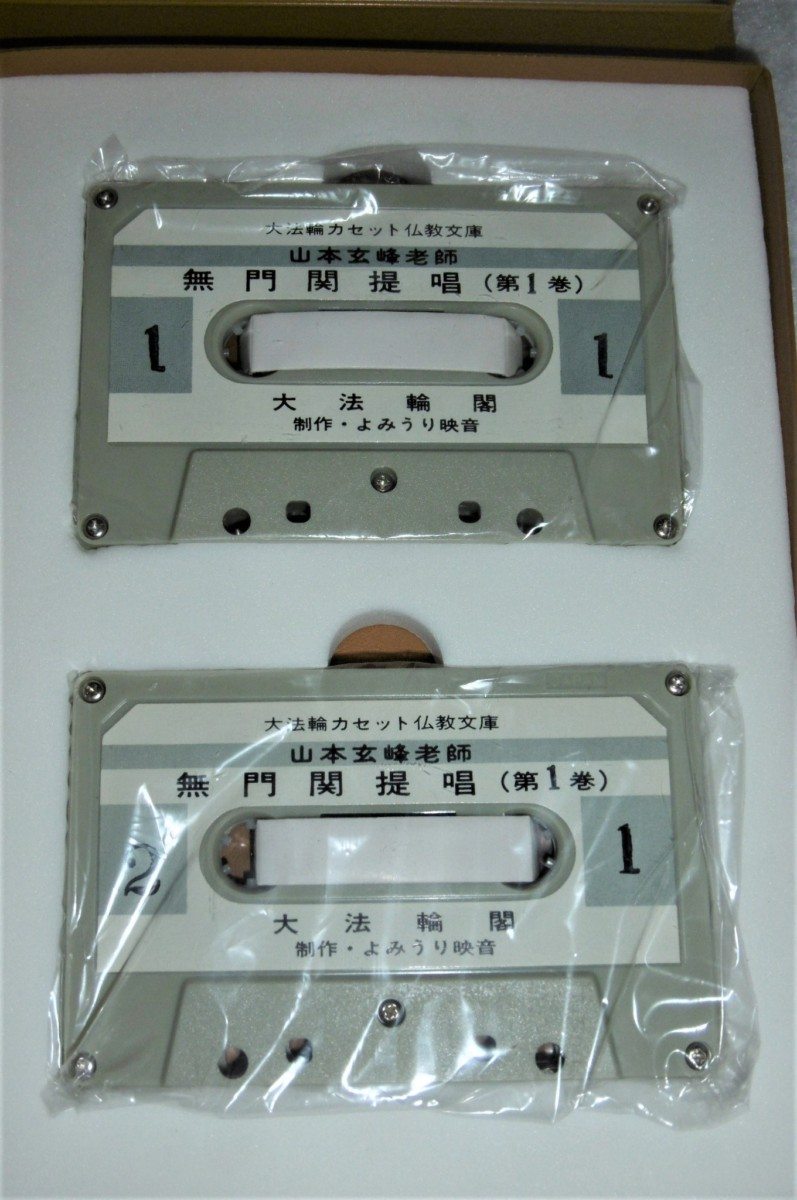 P1050603 (2)