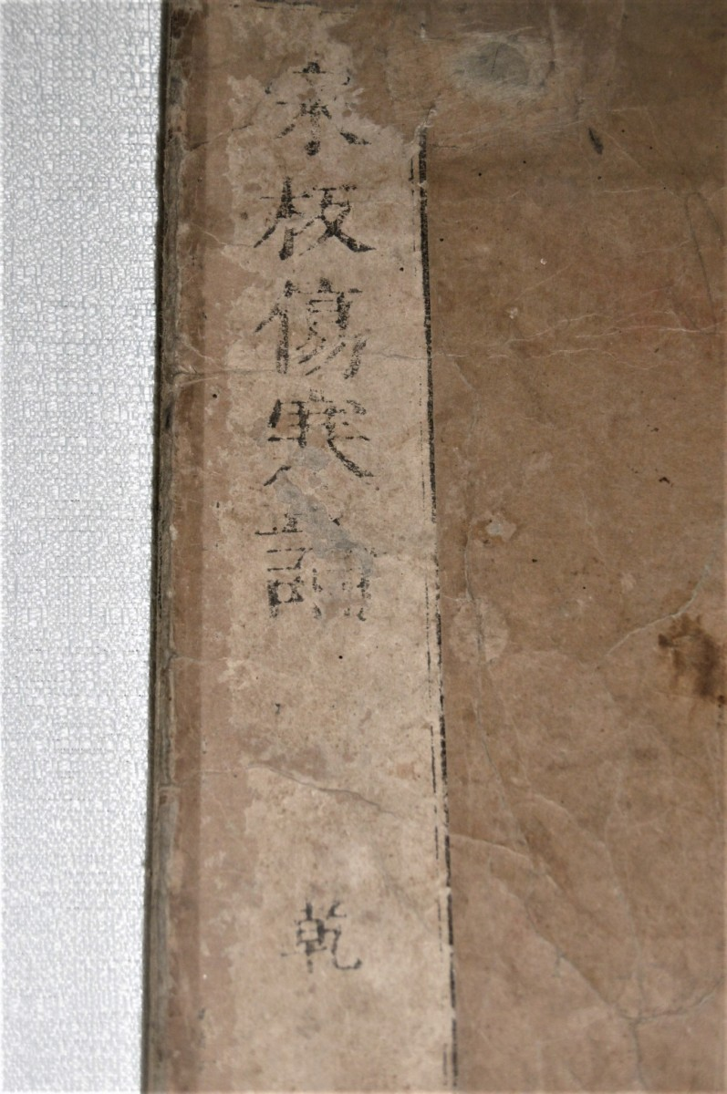 P1000719 (2)