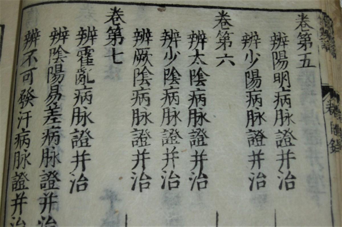 P1000727 (2)